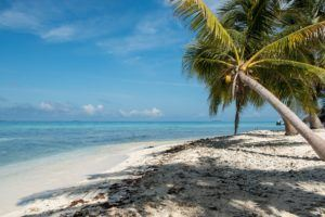 Financial Advice for Expats in Belize